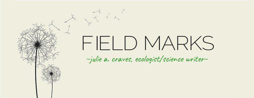 Field Marks